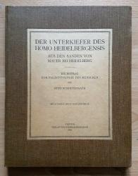 Der Unterkiefer des Homo Heidelbergensis aus den Sanden von Mauer bei Heidelberg. Ein Beitrag zur Paläontologie des Menschen.