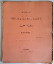 Beiträge zur Struktur und Entwickelung des Carcinoms.