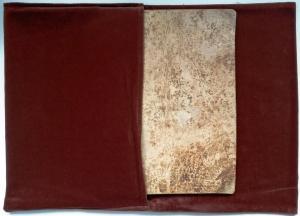 Das Musterbuch des Giovannino de Grassi.